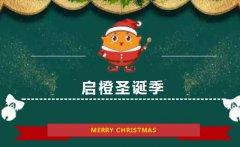 启橙英语启橙圣诞季限时0元,开启冬日小美好!